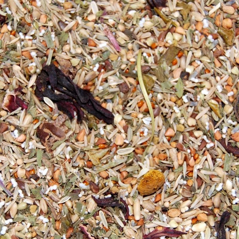 Agaporniden Kräutervielfalt