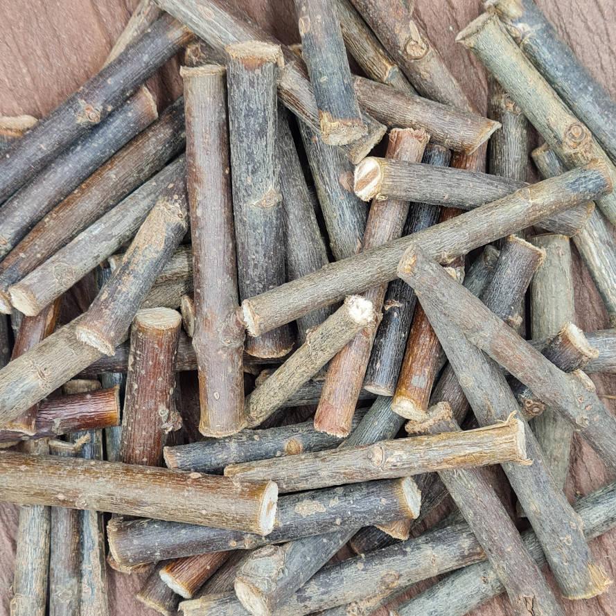 Knabberholz vom Weidenbaum