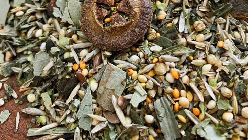 Abbildung einer Samen und Körnermischung
