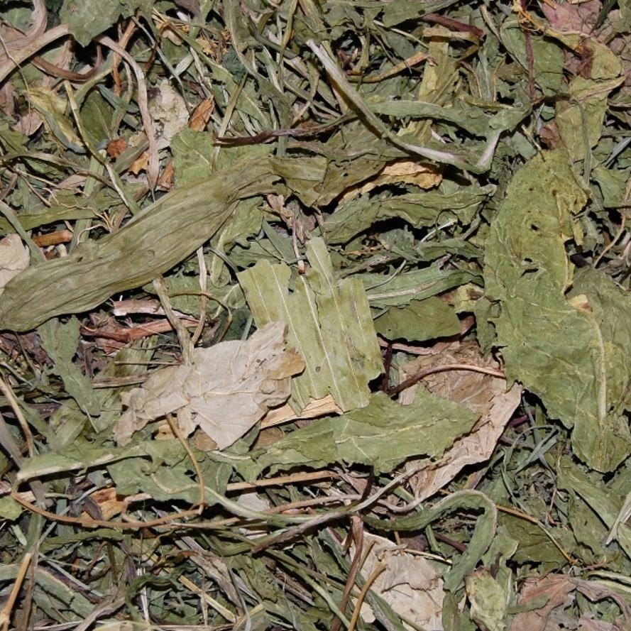 Chinchilla Kräutermix